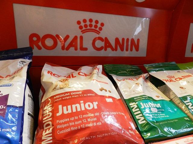Vendita cibo e accessori per cani a Messina